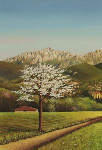 RIDOTTA Primavera 2- _abc